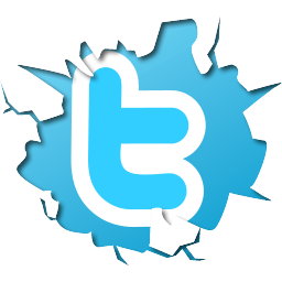 Twitter tips, practical Twitter tips, marketing tips, down and dirty guide to twitter, how to twitter guide, build a twitter profile, twitter photo, twitter image, Rosemary E Lunn, Roz Lunn, The Underwater Marketing Company, marketing mix, practical Twitter how-to tips,