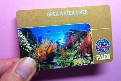 PADI_Open Water Diver course_Ralph Erickson_Drew Richardson_Rosemary E Lunn_Roz Lunn_The Underwater Marketing Company
