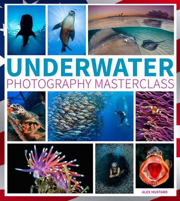 Alex Mustard, Underwater Photography Masterclass, photography book, how to take photos, Rosemary E Lunn, Roz Lunn, The Underwater Marketing Company, scuba diving PR, diving news