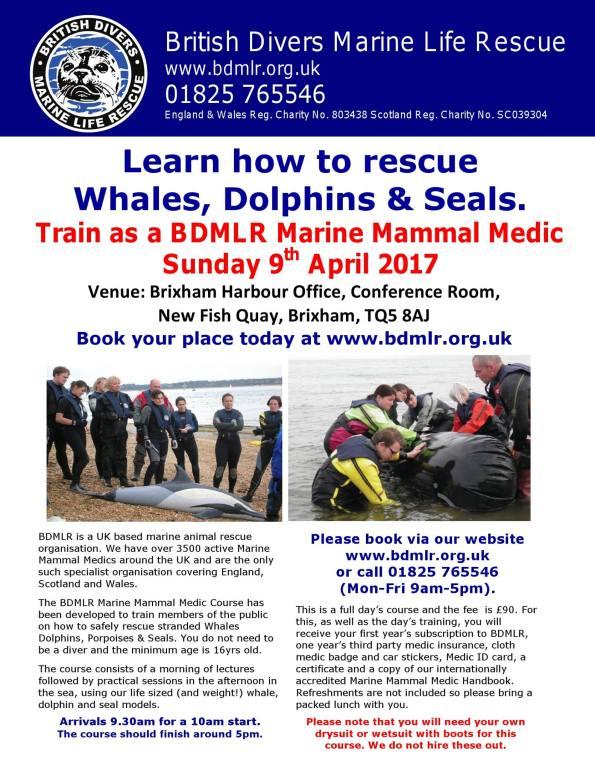 British Divers Marine Life Rescue, BDMLR, Doug Allan, Monty Halls, Rosemary E Lunn, Roz Lunn, The Underwater Marketing Company, Brixham, stranded seal, stranded whale, stranded porpoise, stranded dolphin
