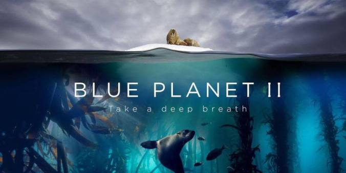 Yolly Bosigner, OWUSS Rolex Australasian scholar, BBC Natural History Unit, David Attenborough, plastic oceans, Blue Planet II, Blue Planet 2, Rosemary E Lunn, Roz Lunn, The Underwater Marketing Company, scuba diving news, Impact Award,