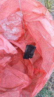 Lucia Cavazzuti, dead cow, sky lantern, chinese lantern, David Bowles, RSPCA, Rosemary E Lunn, Roz Lunn, The Underwater Marketing Company, sky litter, environment, balloon release